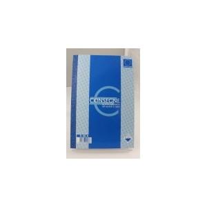 blocco consegna picarta 17x24 cm a 2 copie (pezzi 10)
