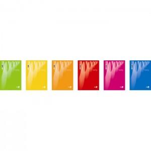 blocco notes A6 quadretti 5mm (10 pezzi)